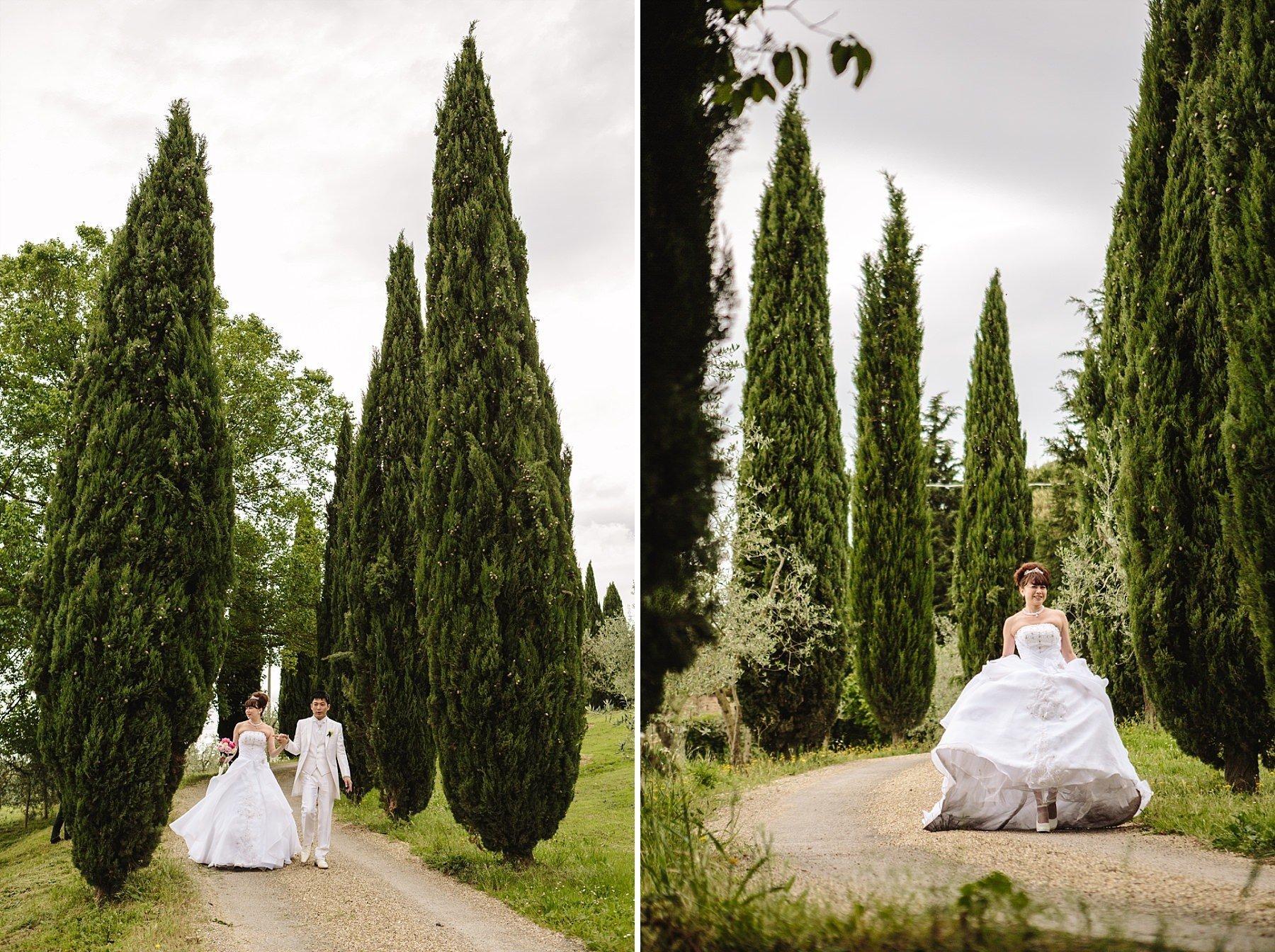 Fotografia di matrimonio con sposi e viale di cipressi tipico della toscana